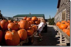 pumpkins2011-5