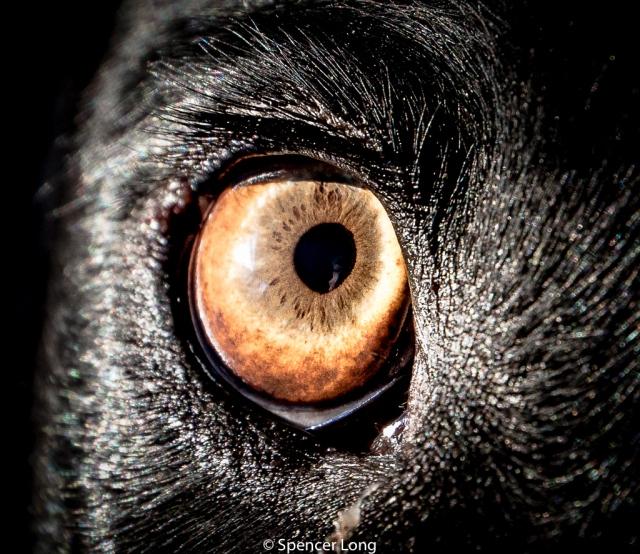 eye.of.storm