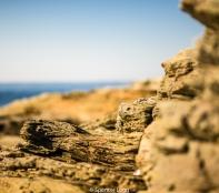 sunbaked.rocks