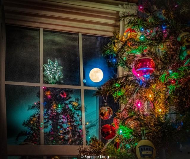 moon.tree.2