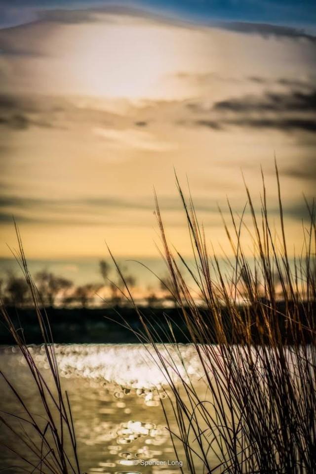 marsh.mud_-2