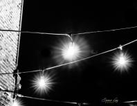 bw.night.3.bulbs